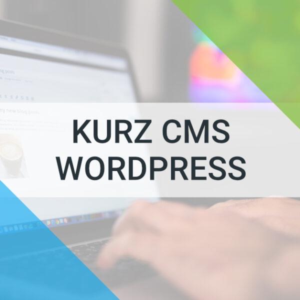 e-learningový kurz cms wordpress tvorba webu